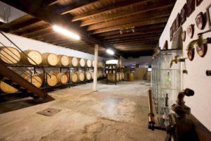 Cellar_Underground